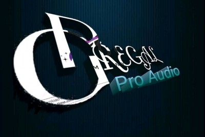 P.G REGAL PRO AUDIO